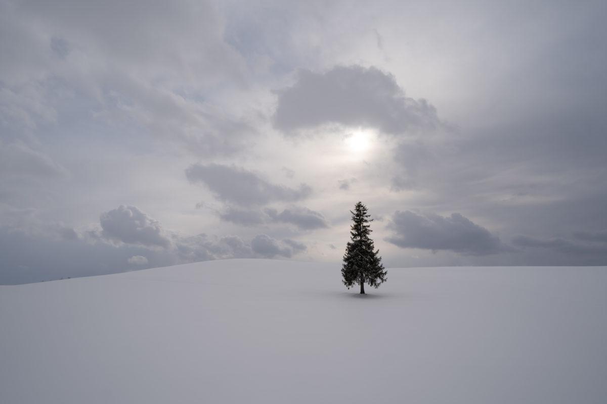 北海道旅行に行ってきたのでがっつり記録する